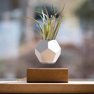 lyfe-planter-pot-de-fleur-levitation-zero-gravite